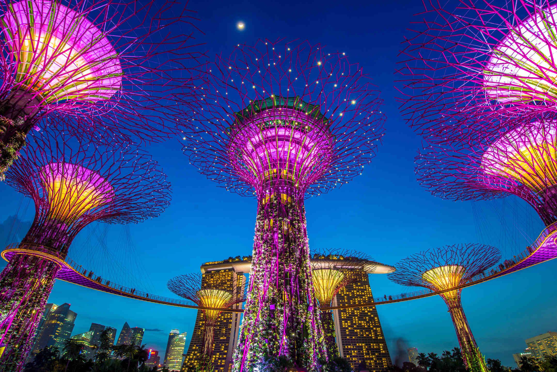 Singapore-Hong Kong air travel bubble commences on Nov 22